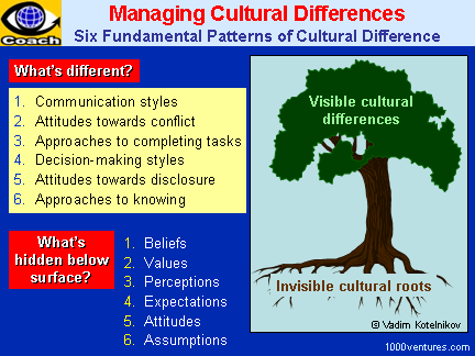 Culturall Differences, Cross-Cultural Challenges - 6 Fundamental Patterns of Cultural Differences
